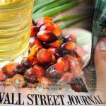 Palm-oil_ringiit_wtj_600