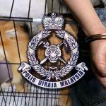 Dog-owner arrested
