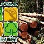 Sarawak-Forestry-Corporation