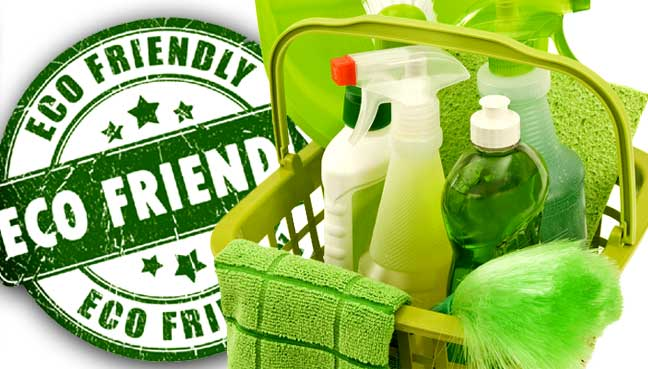 Five natural superstars for green cleaning