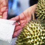 durian_syabu_600