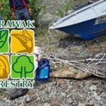Sarawak Forestry Corporation (SFC)