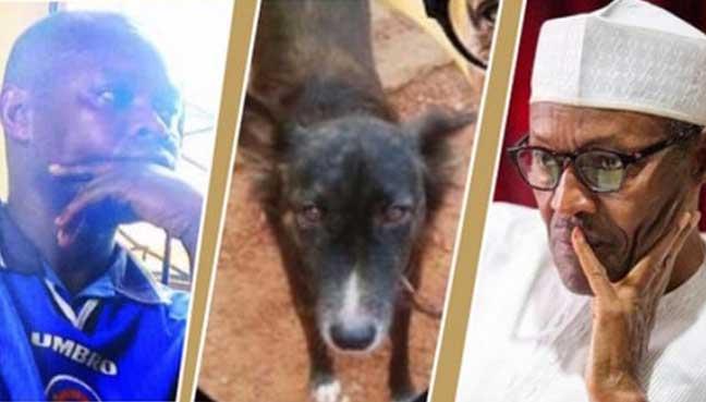 Man-who-named-dog-Buhari-asks-court-to-dismiss-case