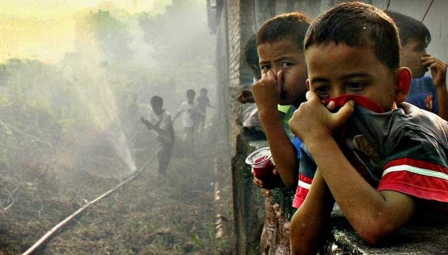 100000 deaths from Indonesia forest fires, study estimates