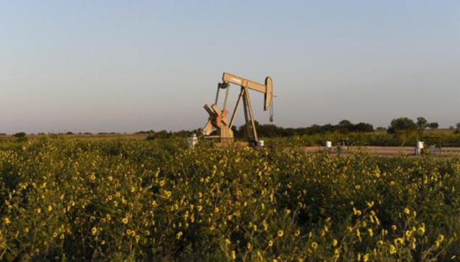 Oil rises above $50 on OPEC cut comments