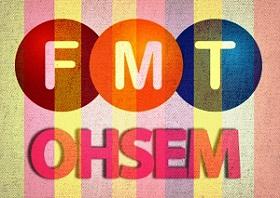 fmt ohsem inside article