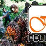 felda kelapa sawit