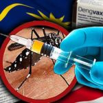 dengue (1)