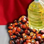 indonesia-palm-oil