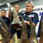 RM14-million-worth-of-rhino-horns-seized-at-KLIA