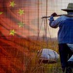 china-farmer