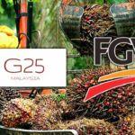 fgv-g25
