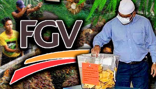 fgv_undi_kelapa-sawit_600