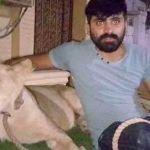 man-lion-pakistan