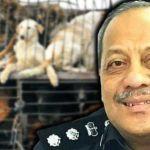 Saiful-Bahari-Abdullah-dog-in-cage