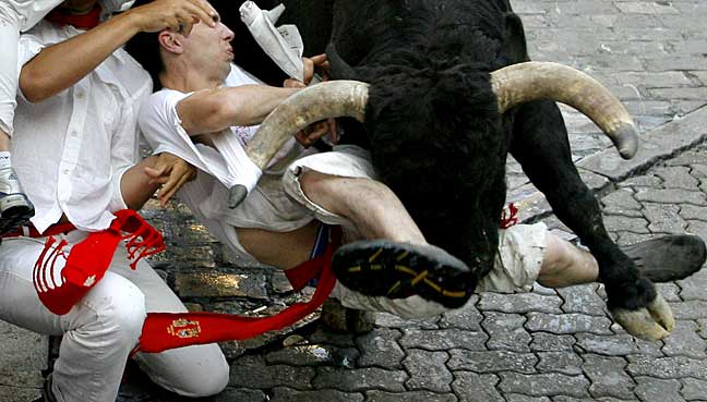 bull-chase