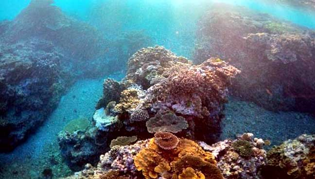 great-barrier-reef