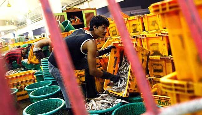 myanmar-worker-thailand