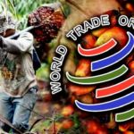 wto-palm-oil-1