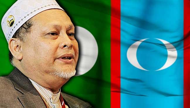 Mohd-Amar-Nik-Abdullah-pas-pkr-bendera-malaysia