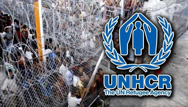 unhcr-refugee