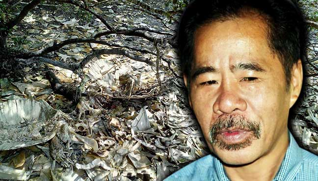 Turtle-poaching in Sabah islands: Man remanded