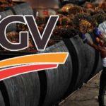 FGV_oil