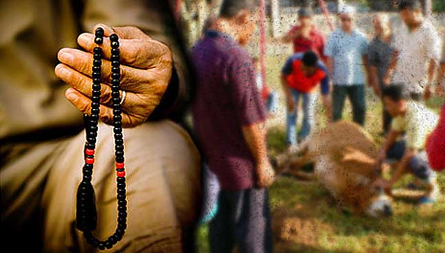 Aidiladha and the forgotten sacrifice
