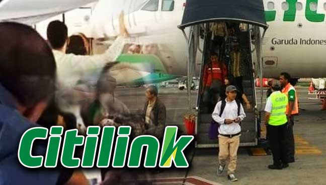 Married couple punch stewardess over luggage