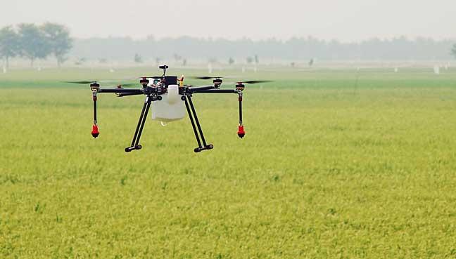Pertanian Guna Teknologi Dron Tarik Minat Petani Muda Free Malaysia Today