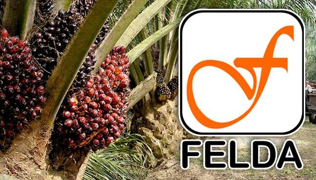 Felda bukan setakat ladang kelapa sawit lagi