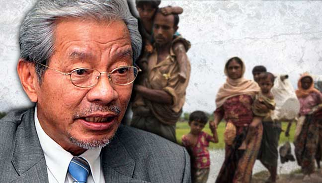 Perception of Rohingya as persecuted is 'superficial', says Masing
