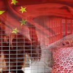 smuggling-china-1