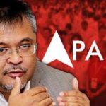 Ibrahim-Suffian-Pakatan-needs-a-party-like-PAS-1