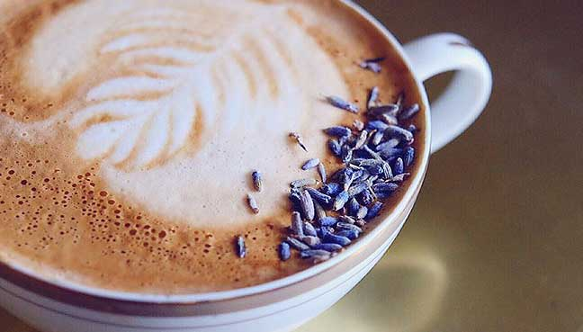 Honey-Lavender-Latte