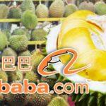 durian-alibaba-com