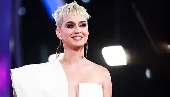Katy Perry wins case with businesswoman over LA convent