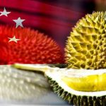 singapore_durian_600