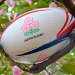 japan-rugby