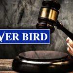 silver-bird-court