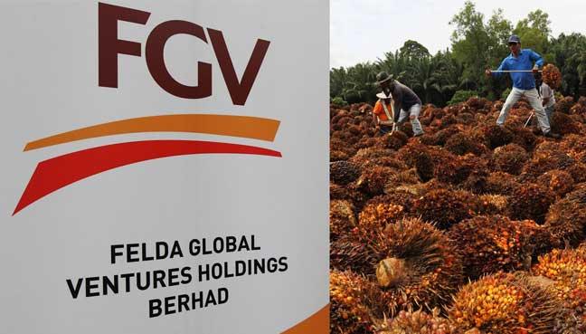 FGV to expand landbank size for crude palm oil plantation