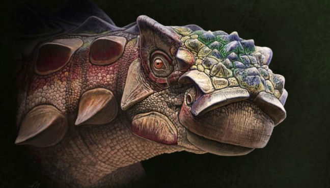 New Armored Dinosaur Species Discovered In Utah Named 'Thorny Head'
