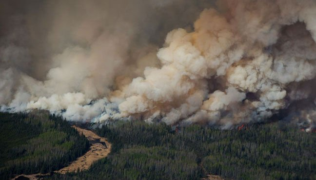 Drought and high temperatures result in numerous wildfires in Sweden