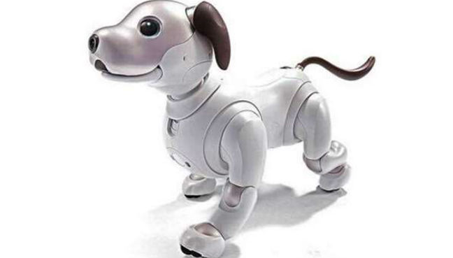 Sony to release AI-infused robotic pups in the US | Free