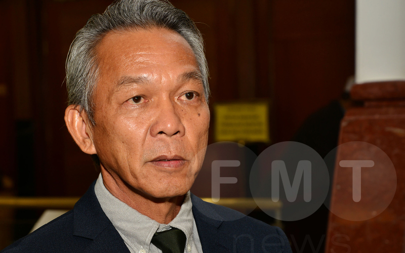 MTIB: We're not involved in Perak forest plantation project | Free