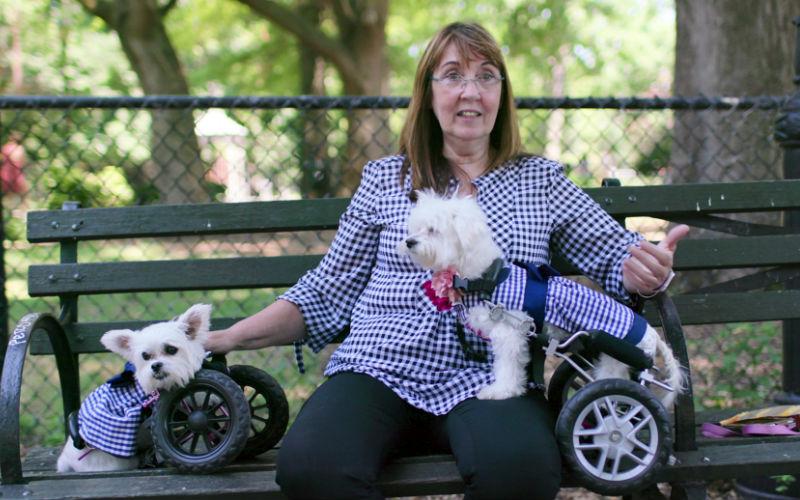 Netflix docu-series 'Dogs' lovingly serves up the human bond