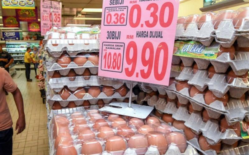 Mydin boss tells how to break egg shortage, price hike