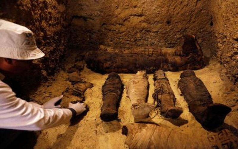 The Curse Of King Tuts Tomb Torrent: Egypt Unveils Pharaonic Tomb, Home To 50 Mummies