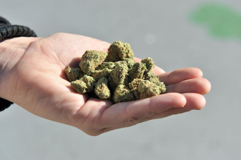 FMT-thailand-medical-marijuana-afp-080319.jpg