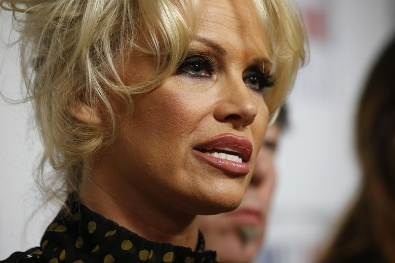 Pamela Anderson and Kristinn Hrafnsson speak after visiting Julian Assange in prison